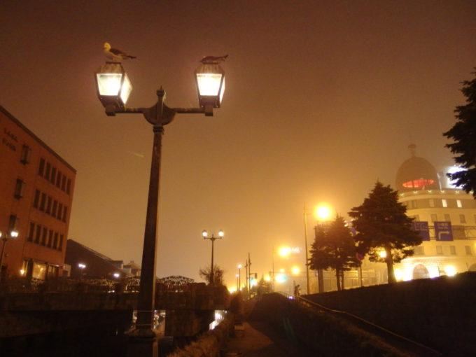 ぼんやりと灯る小樽運河のガス灯にとまるかもめたち