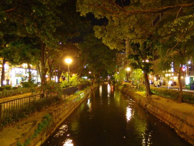 夜の輝きを映す岡山を流れる西川