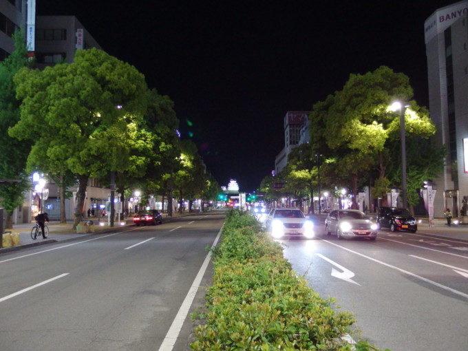 夜空に輝く白亜の姫路城
