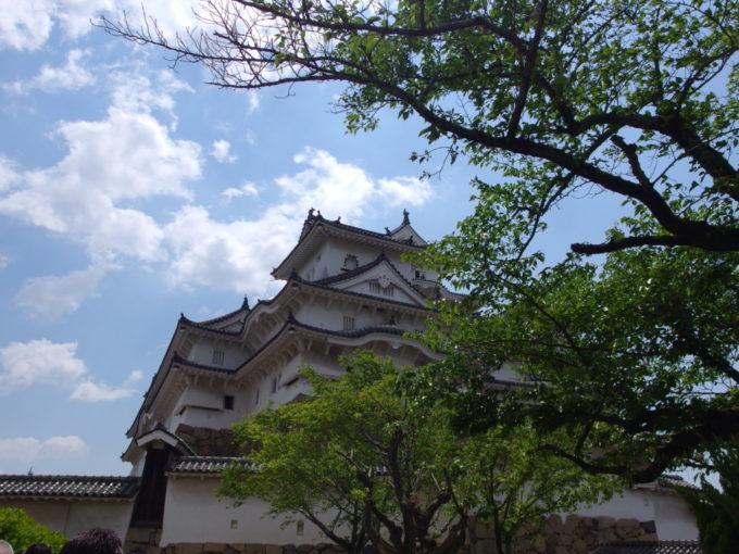 新緑と青空に映える優美な白鷺城