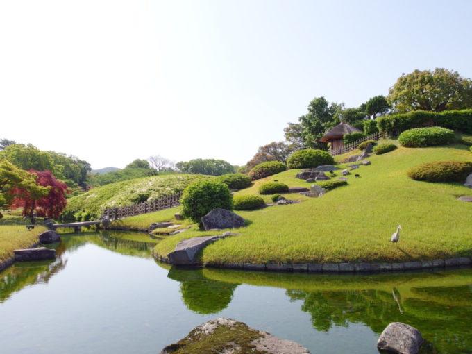 日本三名園後楽園唯心山の麓に佇むアオサギ