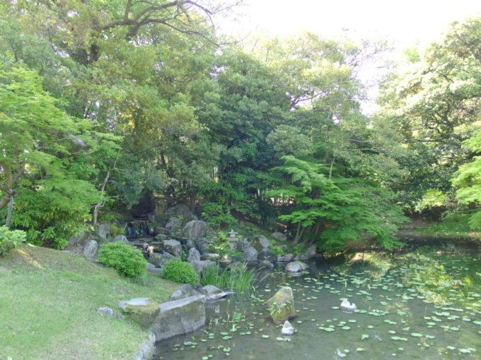 日本三名園後楽園ひっそりとした雰囲気の花葉の池