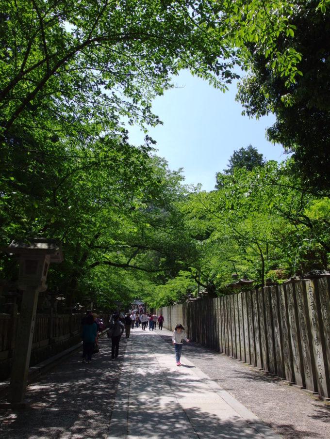 下の参道の賑わいが嘘のように静かな金刀比羅宮参道