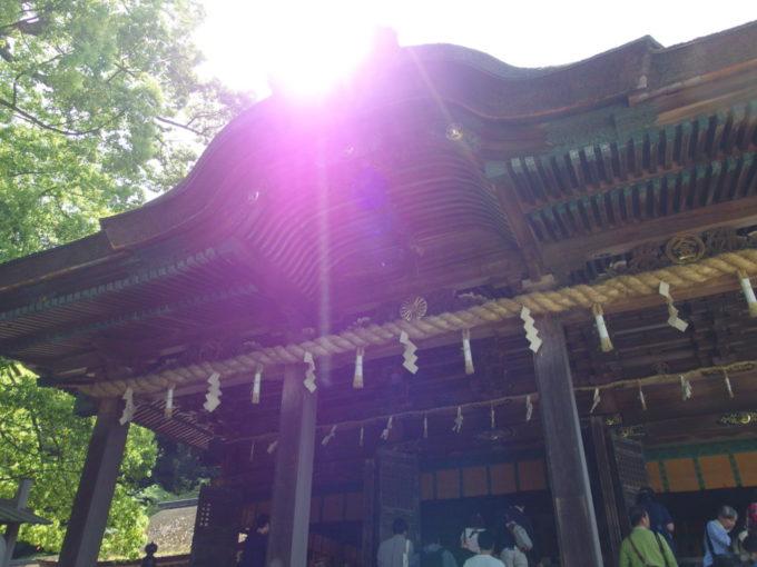 初夏の太陽に輝く金刀比羅宮御本宮