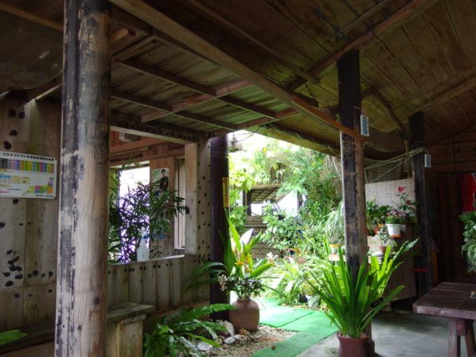 石垣島真栄里ふるさと食堂ジャングル感溢れるテラス席
