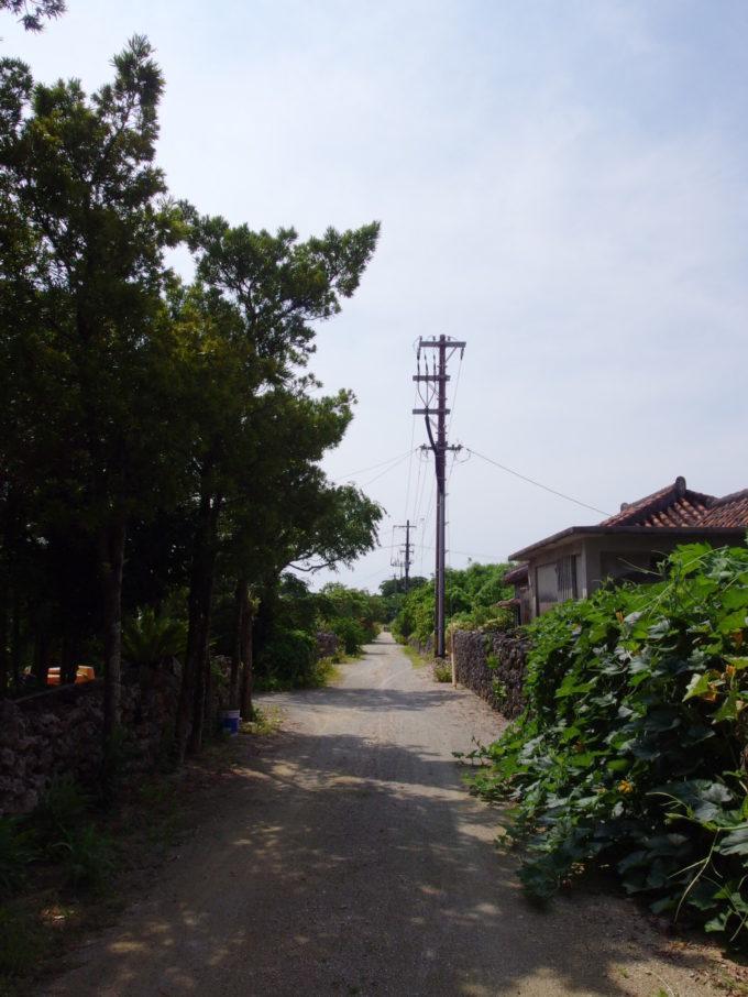 1年ぶりの竹富島に上陸