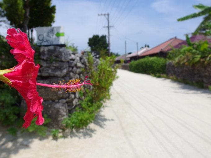 夏の竹富島珊瑚の石垣と赤瓦、彩りを添えるハイビスカス