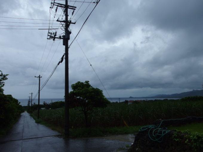 米原ヤシ林下から望む雨の石垣の海