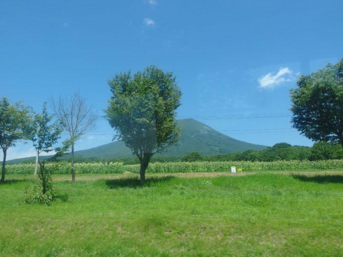 弘南バス車窓に広がる嶽きみ畑と津軽富士