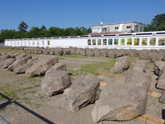 夏の弘前公園改修工事により仮置きされた石垣の大きな石