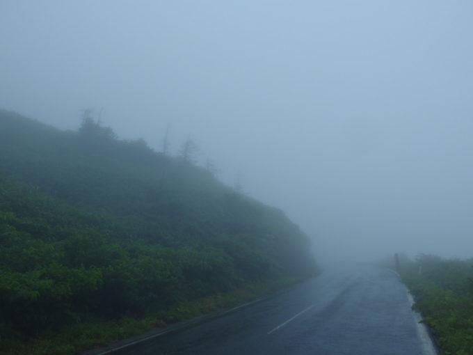 8月にもかかわらず寒い雨の中歩く八幡平への道