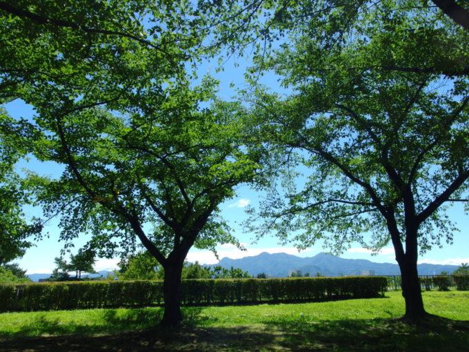 盛岡城跡岩手公園から眺める美しい山並み