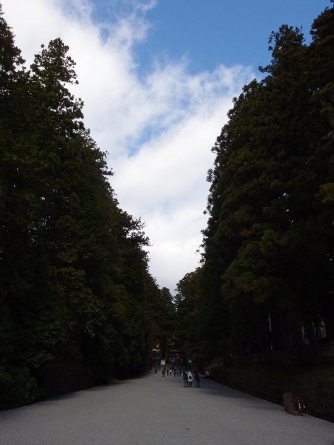 晩秋の晴れ空の下のびる日光東照宮参道
