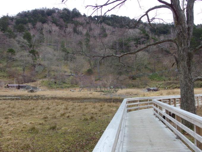 日光湯元温泉初冬の枯色に覆われた湯ノ平湿原