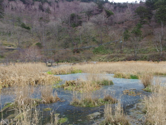 日光湯元温泉初冬の荒涼とした雰囲気に包まれる湯ノ平湿原