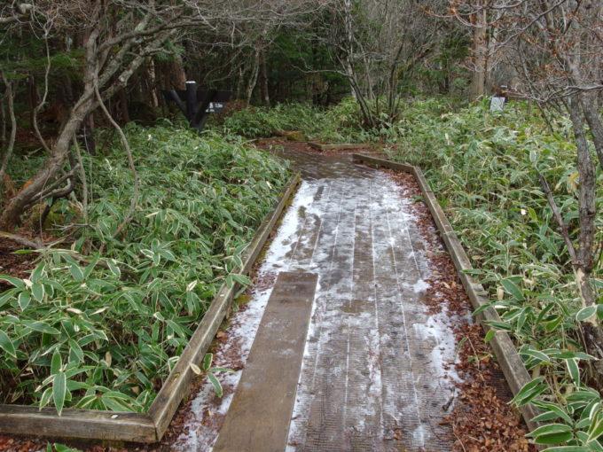 初冬の日光湯元温泉うっすらと雪の積もる湯ノ湖沿いの木道