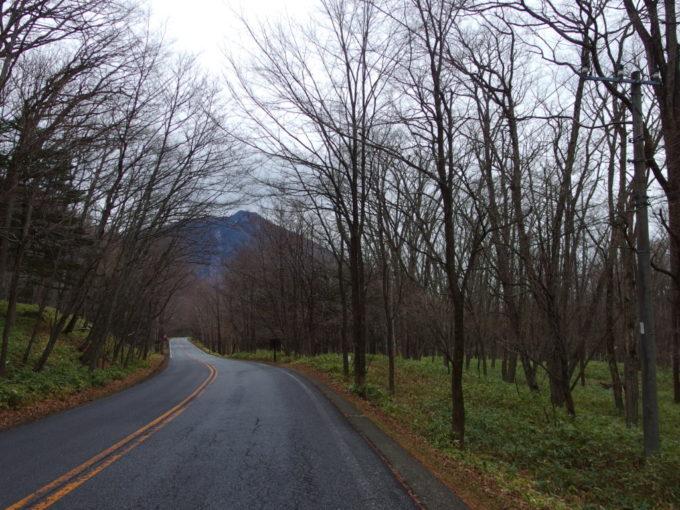 初冬の奥日光小雨に濡れる車道を歩く