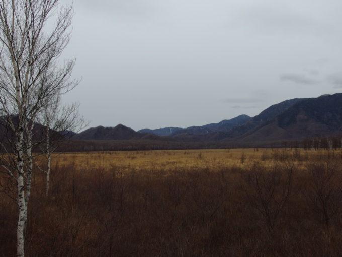 枯色に染まる初冬の戦場ヶ原