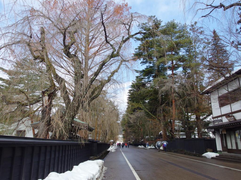 2月の角館黒塀と冬の青空