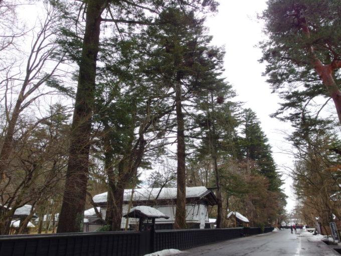 冬の角館武家屋敷は雪を纏いしっとりとした風情
