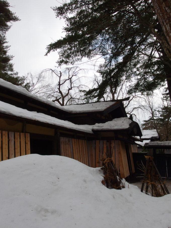 冬の角館雪に埋もれる武家屋敷岩橋家