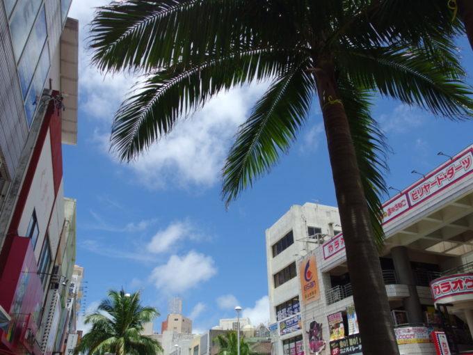 夏の国際通りヤシの木と青空の美しいコントラスト