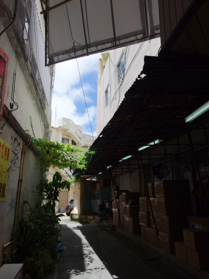 那覇平和通り商店街の建物の隙間に実るゴーヤー