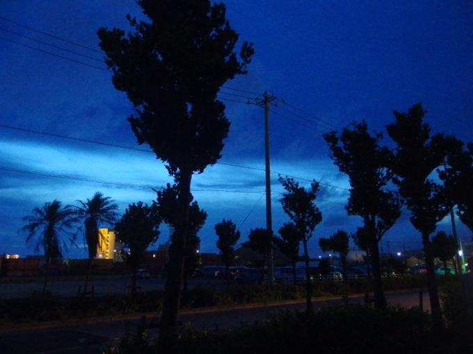 夏の石垣島明るさの残る夜空に映える街路樹