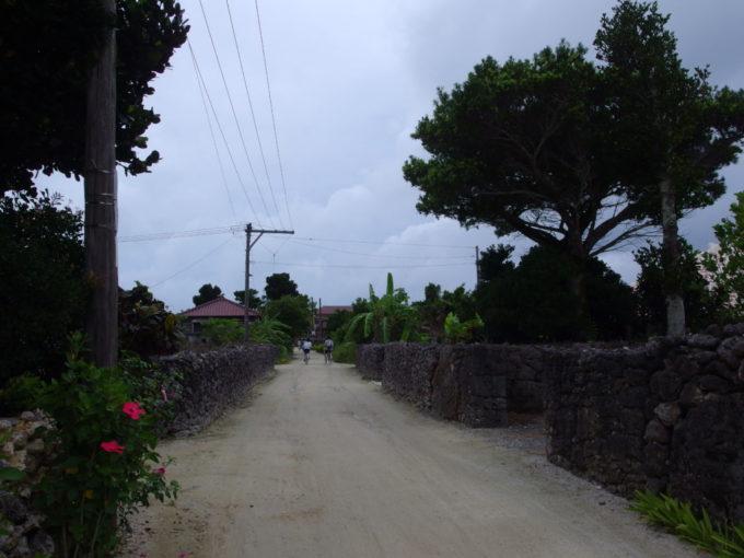 夏の竹富島石垣の続く集落の道