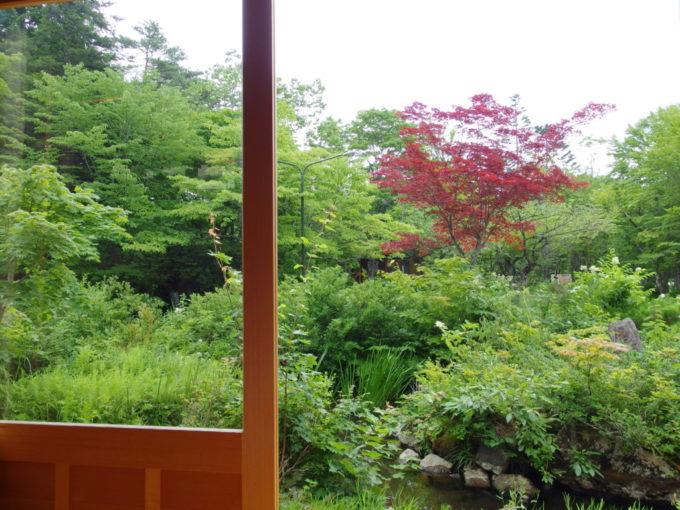 夏の蔦温泉旅館あづまし処楓の間から望む豊かな緑