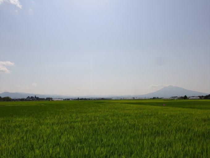 平川市尾上地区田園の先に佇む岩木山