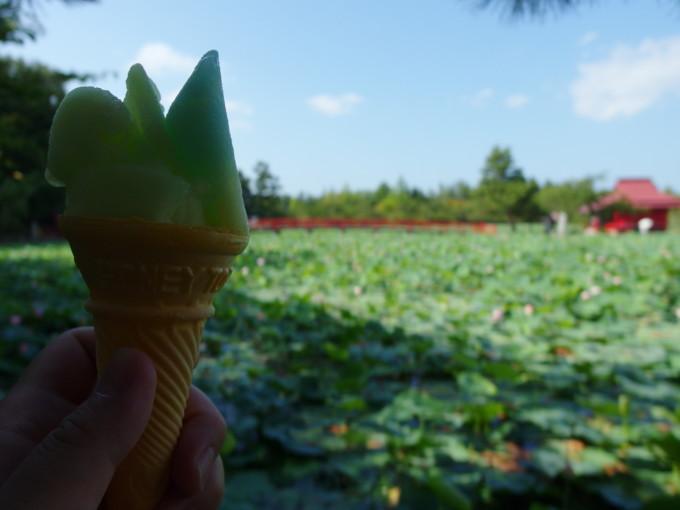 津軽尾上猿賀神社鏡ヶ池の蓮を見ながら屋台のアイスでクールダウン