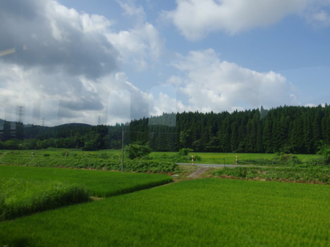 奥羽本線701系の車窓から眺める秋田杉の美林