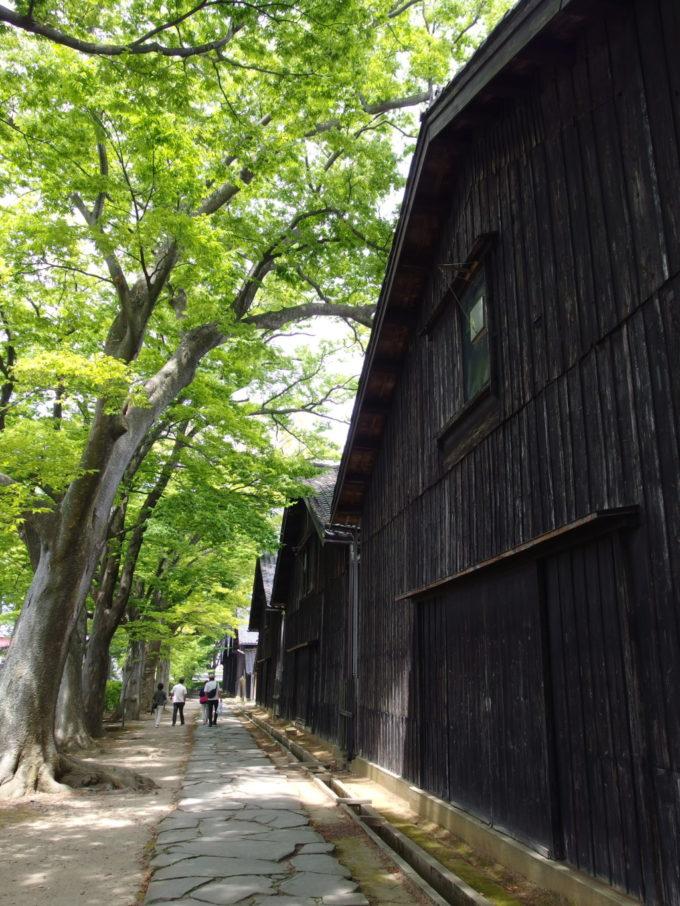 夏の酒田渋い色合いの羽目板で覆われる山居倉庫とけやき並木