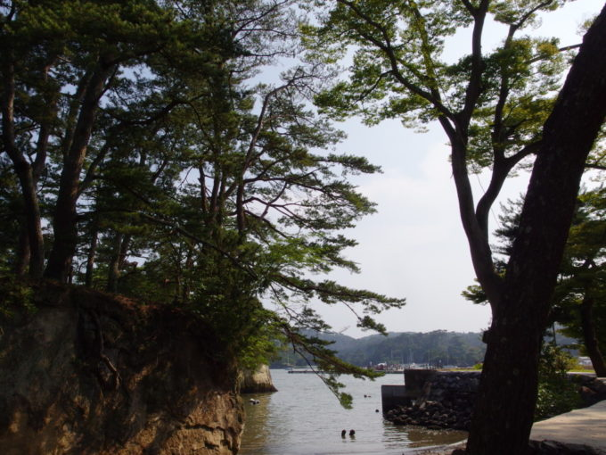 日本三景松島五大堂近くのかき料理げんぞう松島の海を見ながら待つひととき