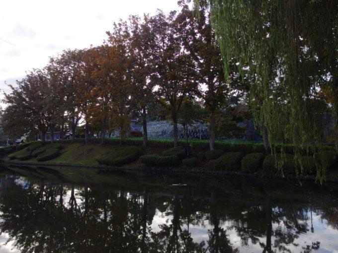 秋の盛岡お堀沿いに色付く桜並木