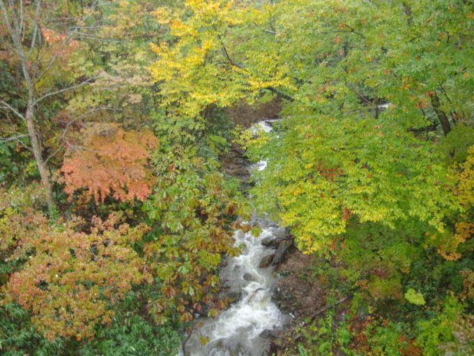 休暇村岩手網張温泉湯ノ沢大橋から望む雨に煙る紅葉