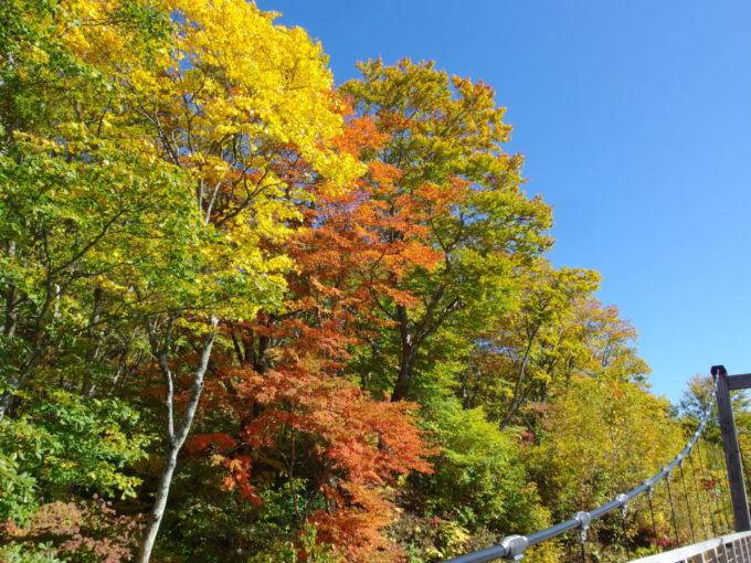 休暇村岩手網張温泉吊り橋を彩る紅葉