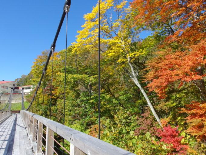 休暇村岩手網張温泉湯ノ沢を彩る紅葉した木々
