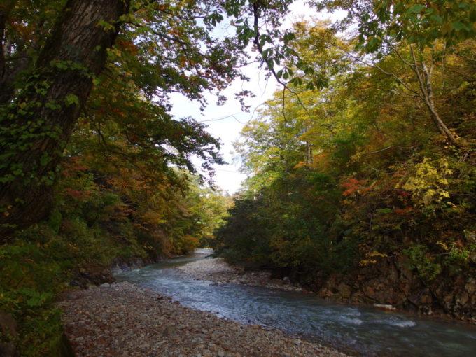 秋の夏油温泉元湯夏油夏油川を彩る紅葉した木々