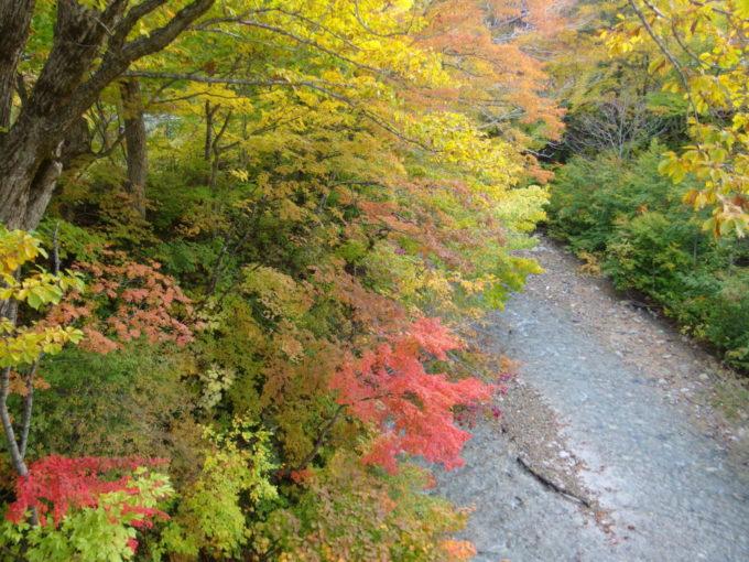 秋の夏油温泉元湯夏油橋上から眺める鮮やかな紅葉