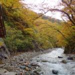 錦零れる秋いわて ~いで湯ともみじに染められて 5日目 ②~