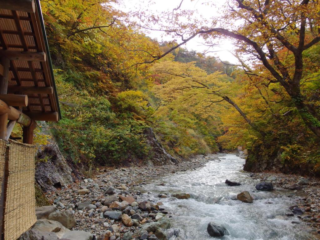 秋の夏油温泉元湯夏油紅葉に染まる夏油川沿いの女(目)の湯
