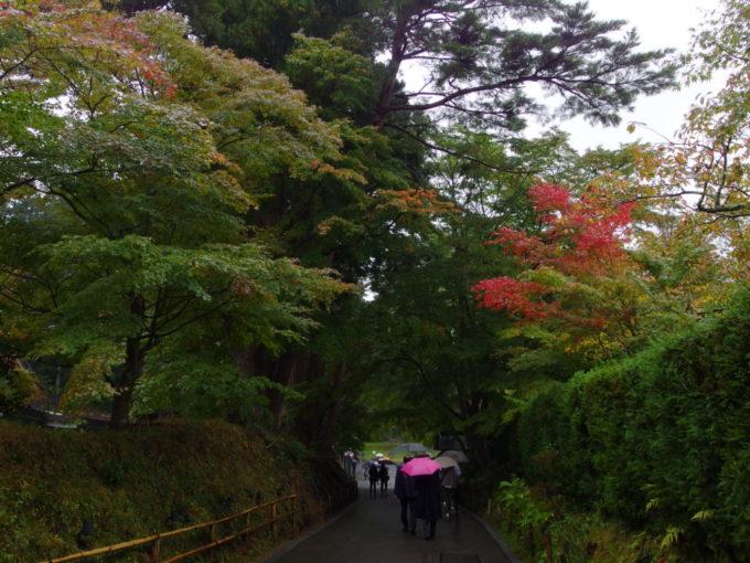 秋の平泉中尊寺色付き始めた参道の紅葉