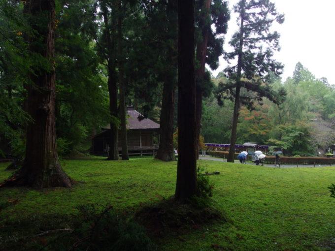 秋の平泉中尊寺雨にしっとりと濡れる苔