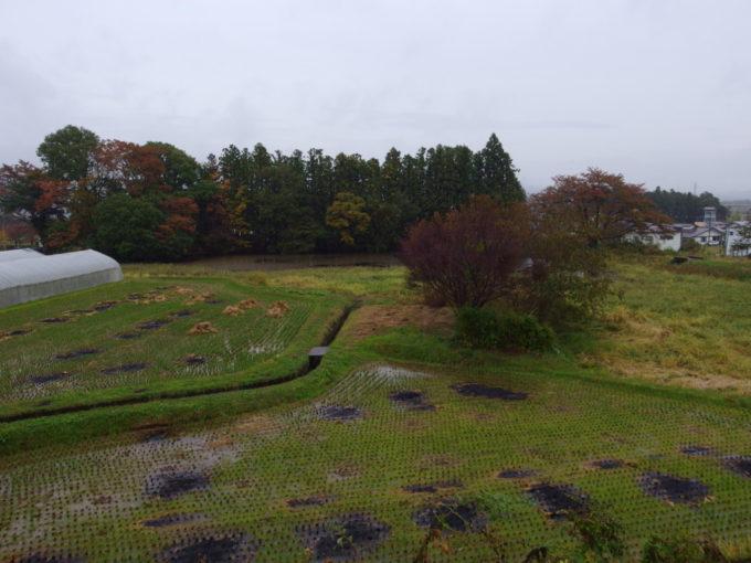 秋の平泉毛越寺への道から眺める枯色の景色