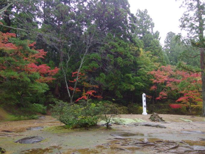 秋の平泉毛越寺紅葉に彩られる講堂跡