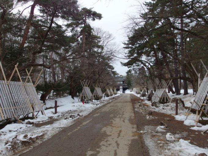 雪のない冬の弘前弘前城の道に並ぶごつい雪囲い