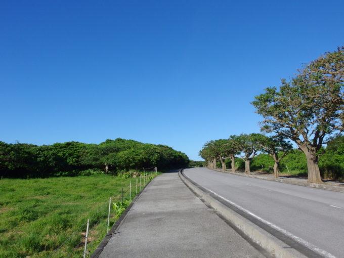 6月下旬人のいない竹富島自転車も車も走らない道