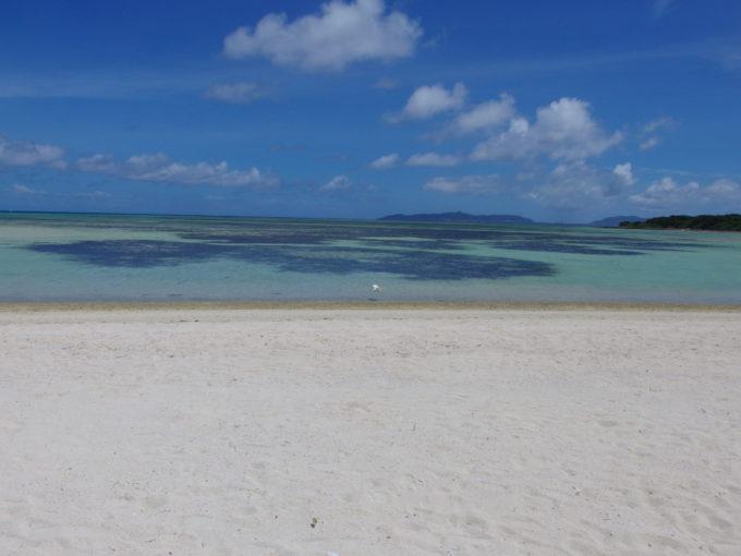 6月下旬人の少ない竹富島青いコンドイビーチに舞い降りる美しいしらさぎ